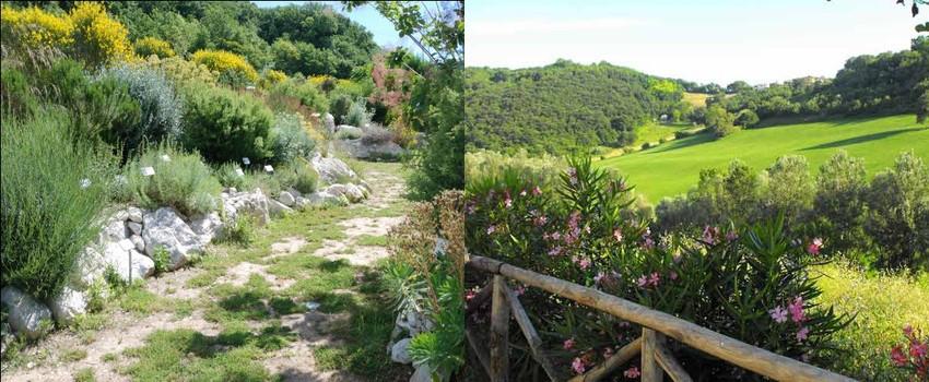 CEA La Selva Gallignano