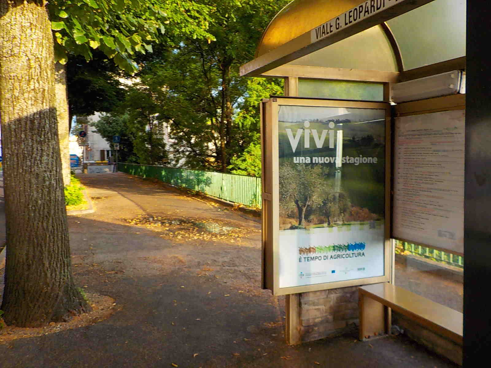 Pensilina PSR Marche 2014-2020 fermata autobus