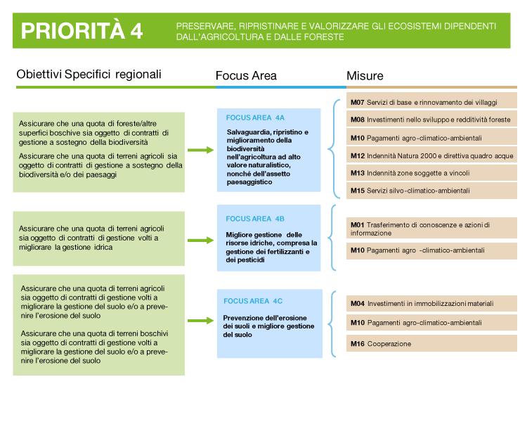 descrizione della priorità 4: obiettivi, focus area e misure