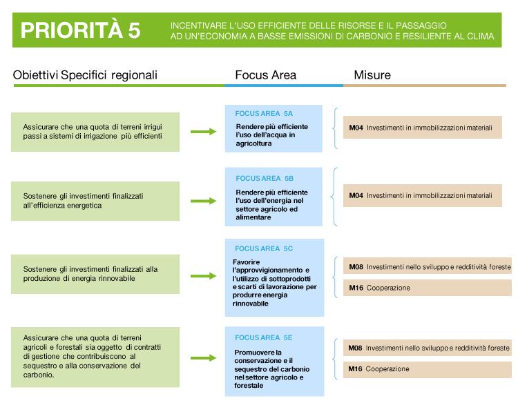 descrizione della priorità 5: obiettivi, focus area e misure